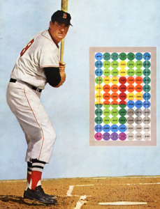 Ted Williams Strike Zone